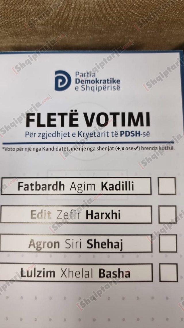 Zgjedhjet në PD mbahet të dielën, publikohet fleta e votimit ku