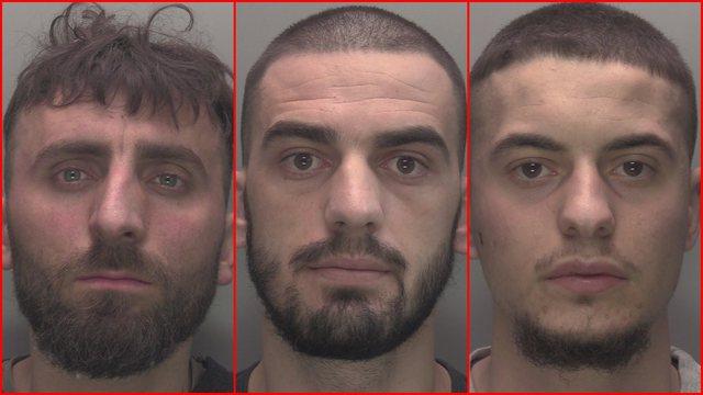 Superferma e kanabisit, dënohen me burg 3 shqiptarët në Britani