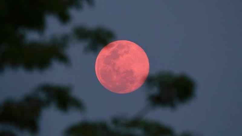 Hëna e parë e plotë për vitin 2021 sjell surpriza të