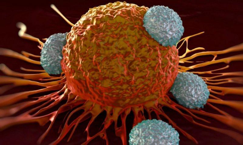 Nga komunikimi tek ushqimi, pesë rregullat për trajtimin e tumorit