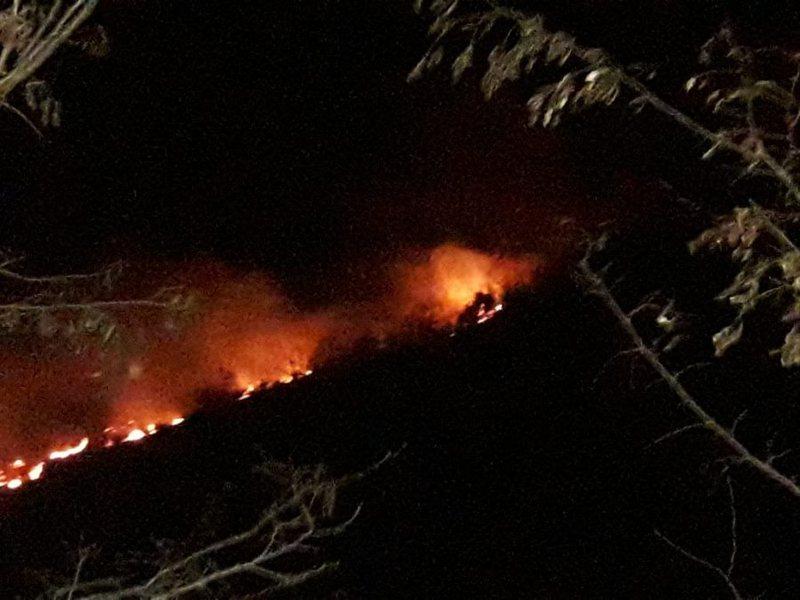 Çfarë po ndodh? Zjarr i madh në Vlorë, zjarrfikësit