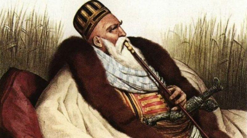 Rusët dhe ndryshimi i historisë për Ali Pashë Tepelenën