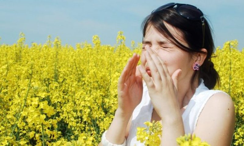 Do allergies return with spring? Learn how to prevent them