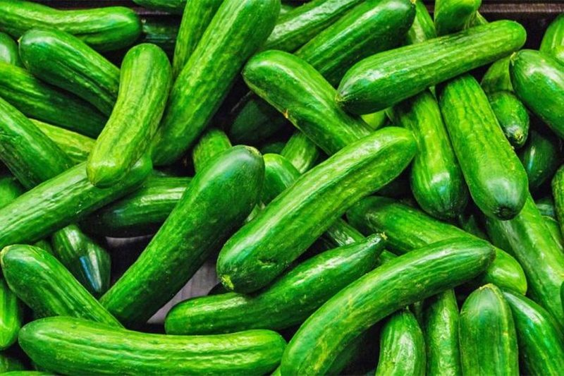 Should bitter cucumbers be consumed? Experts provide important information