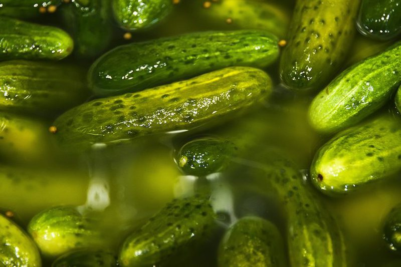Fights very prevalent diseases, discover the magical powers of pickle juice