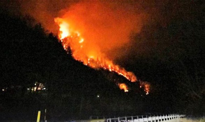 Vlora surrounded by fire for a week! Hundreds of hectares of forests continue to