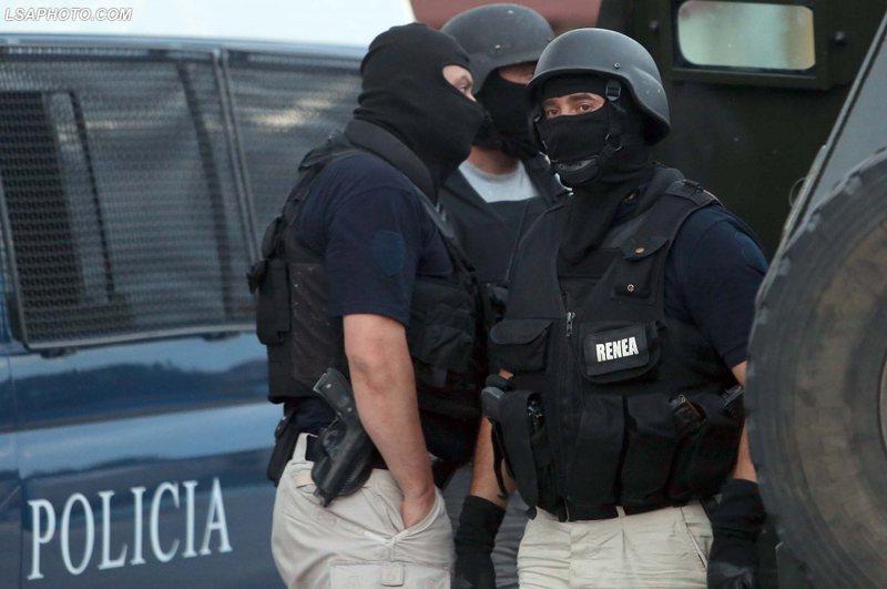RENEA dhe forca të shumta policie zbarkojnë në Mamurras,